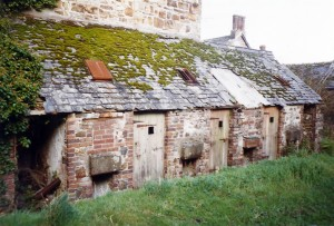Tramp cells, Albro Castle, October 1998 (c) Glen K Johnson
