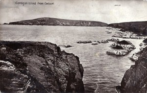 Postcard of Cardigan Island, Post Dated 1917 (Glen Johnson Collection)