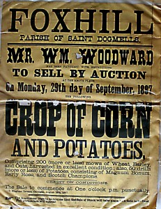Poster for Crop Sale, Foxhill, 20/09/1897 (Glen Johnson Collection)